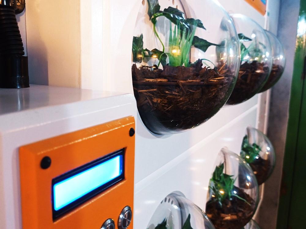 Sub Terra Escape Room biopods